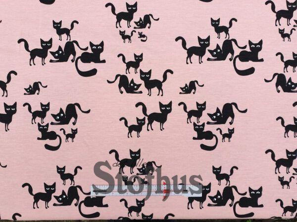 Digital printet bomulds jersey med katte på lyserød/lakse bund